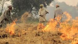 گندم کی باقیات نہ جلائیں، موٹر وے پولیس کی کسانوں سے اپیل