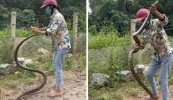خاتون نےخوفناک سانپ پکڑ کرحیران کردیا
