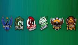 بھارتی دھمکی پر غیر ملکی کرکٹرز کشمیر پریمیئر لیگ سے دستبردار