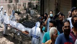 پاکستان: کورونا کیسز کی شرح 8.4 فیصد، مزید 65 اموات